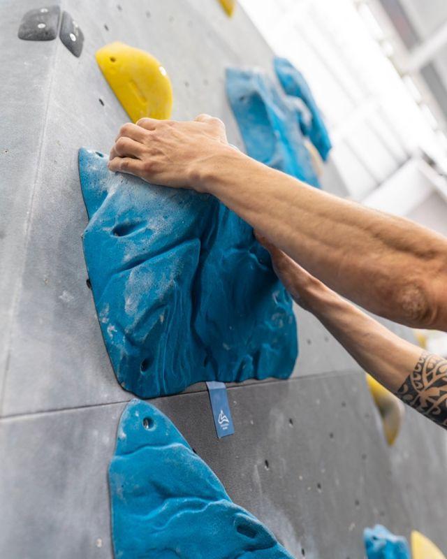 CIRCUITO AZUL • Este verano anímate a probar un nuevo deporte, tenemos circuitos de iniciación esperando por ti 🤩 . . . #sharmaclimbing #sharmaclimbingmadrid #indoorclimbing #climbing #boulder #bouldermadrid #actividadesmadrid
